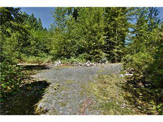 "Photo 11: 651 INGLEWOOD Avenue in West Vancouver: Cedardale Land for sale in ""CEDARDALE"" : MLS®# V1019564"