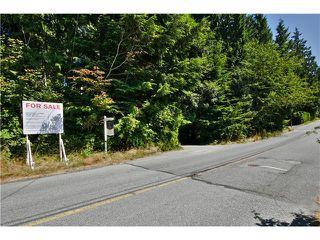 "Photo 5: 651 INGLEWOOD Avenue in West Vancouver: Cedardale Land for sale in ""CEDARDALE"" : MLS®# V1019564"