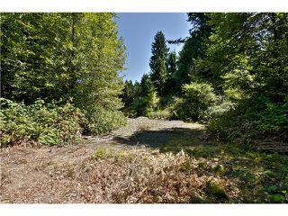 "Photo 12: 651 INGLEWOOD Avenue in West Vancouver: Cedardale Land for sale in ""CEDARDALE"" : MLS®# V1019564"