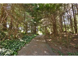 "Photo 6: 651 INGLEWOOD Avenue in West Vancouver: Cedardale Land for sale in ""CEDARDALE"" : MLS®# V1019564"