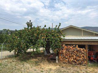 Photo 18: 3120 Elliott Road in West Kelowna: Smith Creek House for sale : MLS®# 10102725