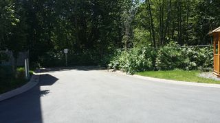 Photo 6: : Townhouse for sale : MLS®# r2077506