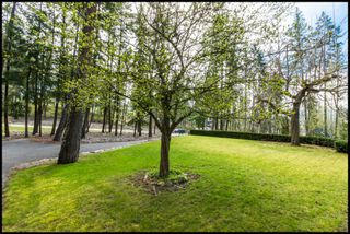 Photo 15: 3191 Northeast Upper Lakeshore Road in Salmon Arm: Upper Raven House for sale : MLS®# 10133310
