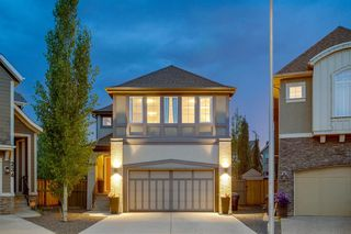 Main Photo: 230 MARQUIS Point SE in Calgary: Mahogany Detached for sale : MLS®# A1016872