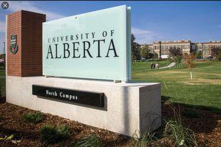 Photo 3: 11573 80 Avenue in Edmonton: Zone 15 Vacant Lot for sale : MLS®# E4222202