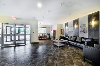 Photo 5: 238 7825 71 Street in Edmonton: Zone 17 Condo for sale : MLS®# E4223294