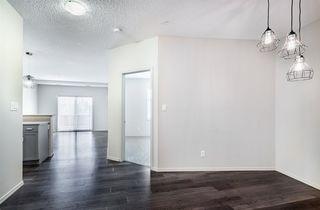 Photo 8: 238 7825 71 Street in Edmonton: Zone 17 Condo for sale : MLS®# E4223294