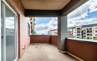 Photo 32: 238 7825 71 Street in Edmonton: Zone 17 Condo for sale : MLS®# E4223294