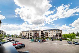 Photo 33: 238 7825 71 Street in Edmonton: Zone 17 Condo for sale : MLS®# E4223294