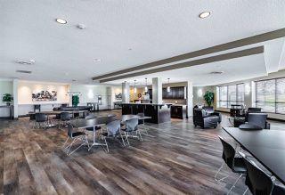 Photo 37: 238 7825 71 Street in Edmonton: Zone 17 Condo for sale : MLS®# E4223294