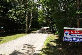Photo 3: 10 Birch Court in Kawartha Lakes: Rural Eldon Property for sale : MLS®# X2715446