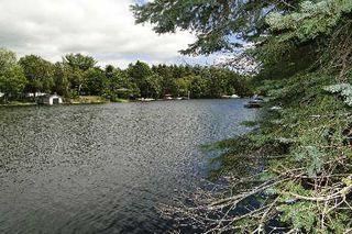 Photo 4: 10 Birch Court in Kawartha Lakes: Rural Eldon Property for sale : MLS®# X2715446