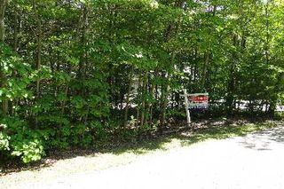 Photo 2: 10 Birch Court in Kawartha Lakes: Rural Eldon Property for sale : MLS®# X2715446