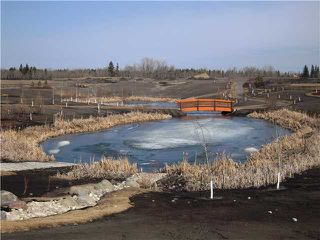 Photo 19: 1423 Chahley PL in EDMONTON: Zone 20 House for sale (Edmonton)  : MLS®# E3366199