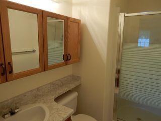 Photo 9: 947 Youville Drive in Edmonton: Zone 29 House Half Duplex for sale : MLS®# E4182684