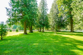 """Photo 6: 21776 6 Avenue in Langley: Campbell Valley House for sale in """"CAMPBELL VALLEY"""" : MLS®# R2476561"""