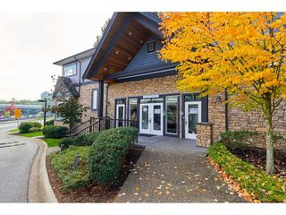 """Photo 35: 63 6299 144 Street in Surrey: Sullivan Station Townhouse for sale in """"Altura"""" : MLS®# R2482013"""
