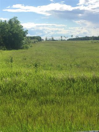 Photo 11: Schroepfer Land in Arborfield: Lot/Land for sale (Arborfield Rm No. 456)  : MLS®# SK827757