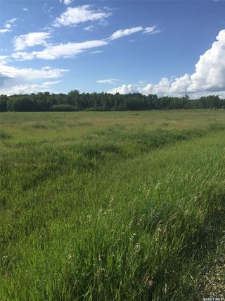 Photo 1: Schroepfer Land in Arborfield: Lot/Land for sale (Arborfield Rm No. 456)  : MLS®# SK827757