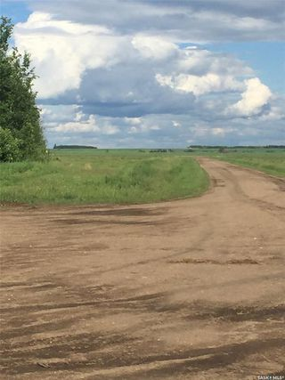 Photo 5: Schroepfer Land in Arborfield: Lot/Land for sale (Arborfield Rm No. 456)  : MLS®# SK827757