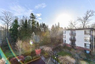 Photo 29: 406 14358 60 Avenue in Surrey: Sullivan Station Condo for sale : MLS®# R2518687