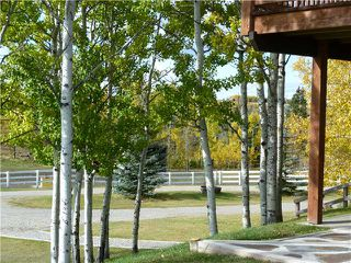 Photo 9: 43141 TWP RD 283 in COCHRANE: Rural Rocky View MD Residential Detached Single Family for sale : MLS®# C3506968