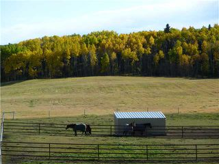 Photo 15: 43141 TWP RD 283 in COCHRANE: Rural Rocky View MD Residential Detached Single Family for sale : MLS®# C3506968