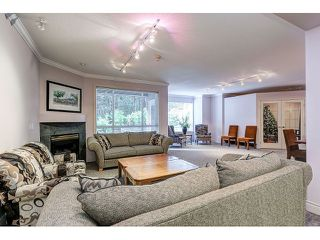 Photo 18: 313 3280 PLATEAU BOULEVARD in Coquitlam: Westwood Plateau Condo for sale : MLS®# R2027215