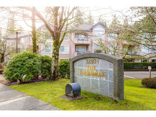 Photo 20: 313 3280 PLATEAU BOULEVARD in Coquitlam: Westwood Plateau Condo for sale : MLS®# R2027215