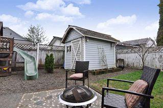 Photo 19: 7982 166B STREET in Surrey: Fleetwood Tynehead House for sale : MLS®# R2150241