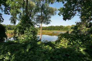 Photo 13: 2511 Lakeshore Rd W #430 in : 1001 - BR Bronte CND for sale (Oakville)  : MLS®# OM2055815