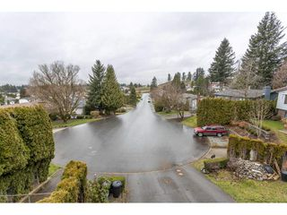 Photo 19: 34915 MCCABE Place in Abbotsford: Abbotsford East House for sale : MLS®# R2440742