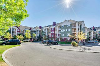 Main Photo: 2408 10 PRESTWICK Bay SE in Calgary: McKenzie Towne Apartment for sale : MLS®# A1036955