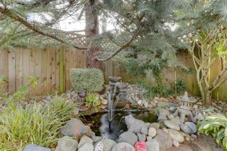 "Photo 35: 5007 LINDEN Drive in Delta: Hawthorne House for sale in ""HAWTHORNE"" (Ladner)  : MLS®# R2504509"