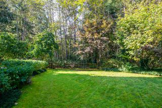 "Photo 31: 132 1252 TOWN CENTRE Boulevard in Coquitlam: Canyon Springs Condo for sale in ""THE KENNEDY"" : MLS®# R2507713"