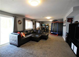 Photo 28: 50 LANDING Drive: Rural Sturgeon County House for sale : MLS®# E4223165