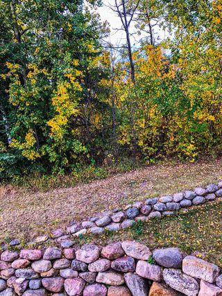 Photo 45: 50 LANDING Drive: Rural Sturgeon County House for sale : MLS®# E4223165