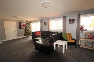 Photo 26: 50 LANDING Drive: Rural Sturgeon County House for sale : MLS®# E4223165