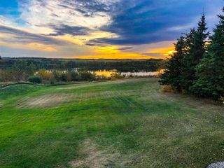 Photo 42: 50 LANDING Drive: Rural Sturgeon County House for sale : MLS®# E4223165