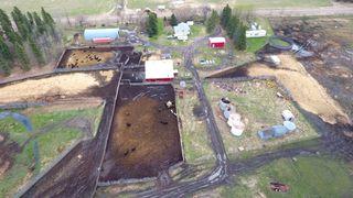 Photo 7: 48336 RR 23: Rural Leduc County House for sale : MLS®# E4197653