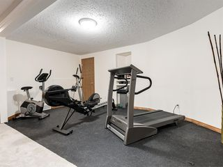 Photo 31: 55 SPRING MEADOWS Lane: Calgary Detached for sale : MLS®# A1016168