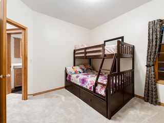 Photo 19: 55 SPRING MEADOWS Lane: Calgary Detached for sale : MLS®# A1016168