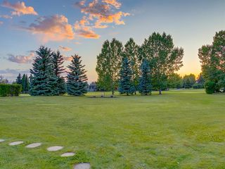 Photo 46: 55 SPRING MEADOWS Lane: Calgary Detached for sale : MLS®# A1016168