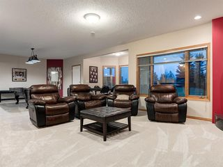 Photo 25: 55 SPRING MEADOWS Lane: Calgary Detached for sale : MLS®# A1016168