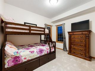 Photo 18: 55 SPRING MEADOWS Lane: Calgary Detached for sale : MLS®# A1016168