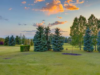 Photo 47: 55 SPRING MEADOWS Lane: Calgary Detached for sale : MLS®# A1016168