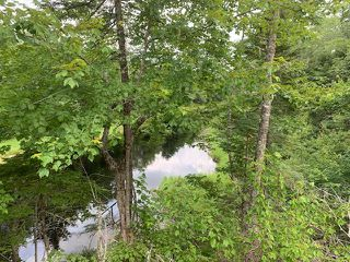 Photo 14: 103 Highway in Sable River: 407-Shelburne County Residential for sale (South Shore)  : MLS®# 202016107