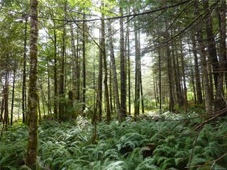 SL 13 in Fir Crest Acres!  A fully serviced 2.77 acre lot.