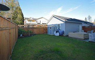 Photo 20: 17269 3A AVENUE in Surrey: Pacific Douglas Home for sale ()  : MLS®# R2034646