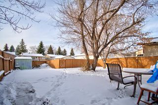 Photo 23: 180 Maitland Place NE in Calgary: Marlborough Park Detached for sale : MLS®# A1048392